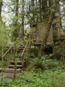 The Nest treehouse at Treehouse Point