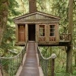Temple of the Blue Moon Treehouse 2