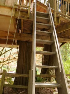 Ladder and pulley at Upper Pond treehouse