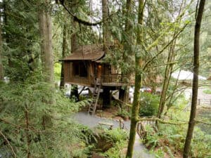 Upper Pond treehouse at Treehouse Point