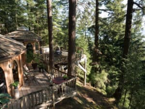 Orcas Island Forest House back deck