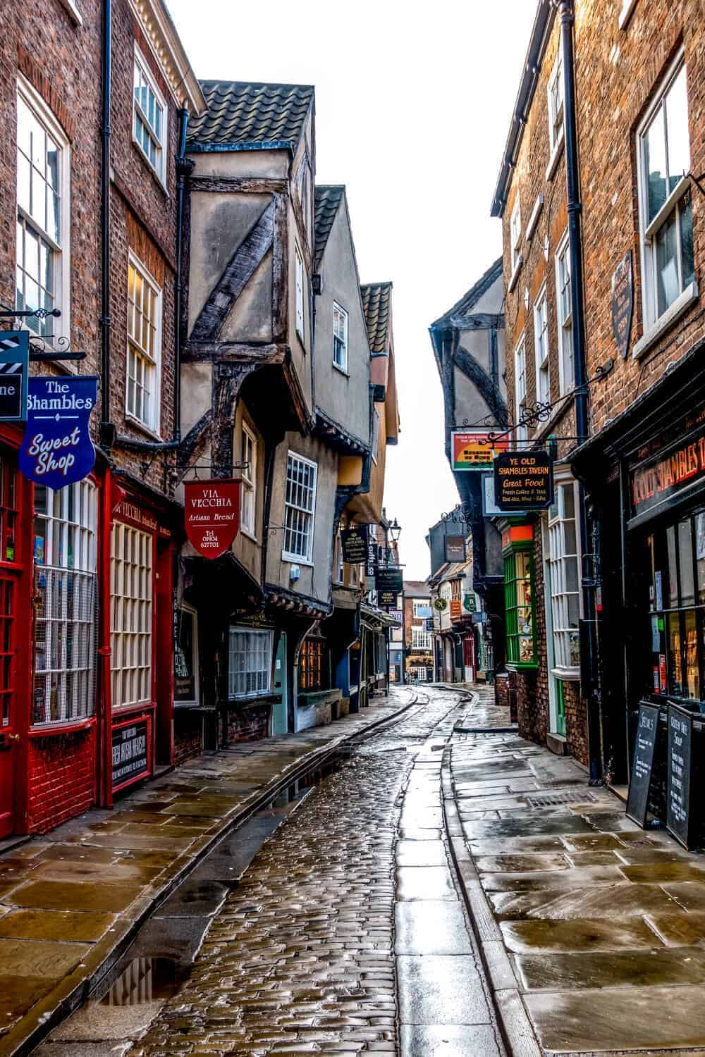 things to do in York the shambles