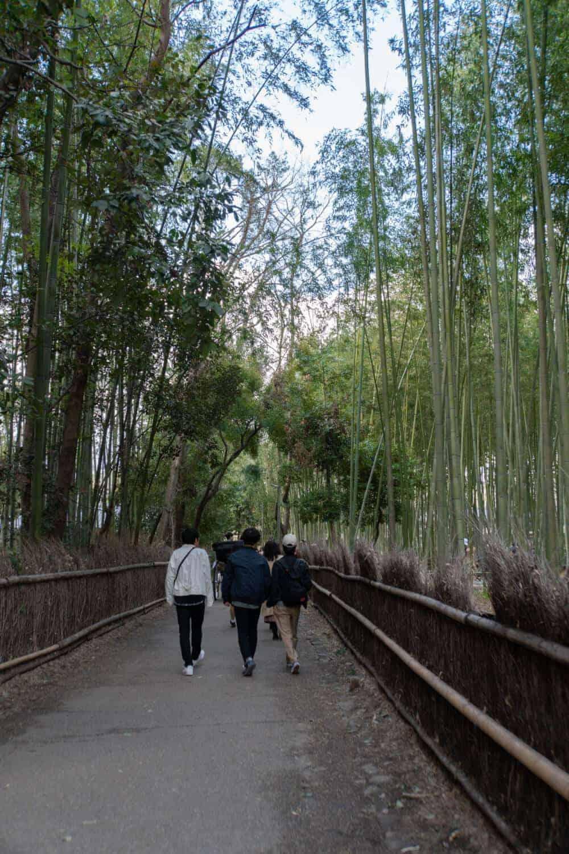 Arashiyama Kyoto Sagano Bamboo Forest