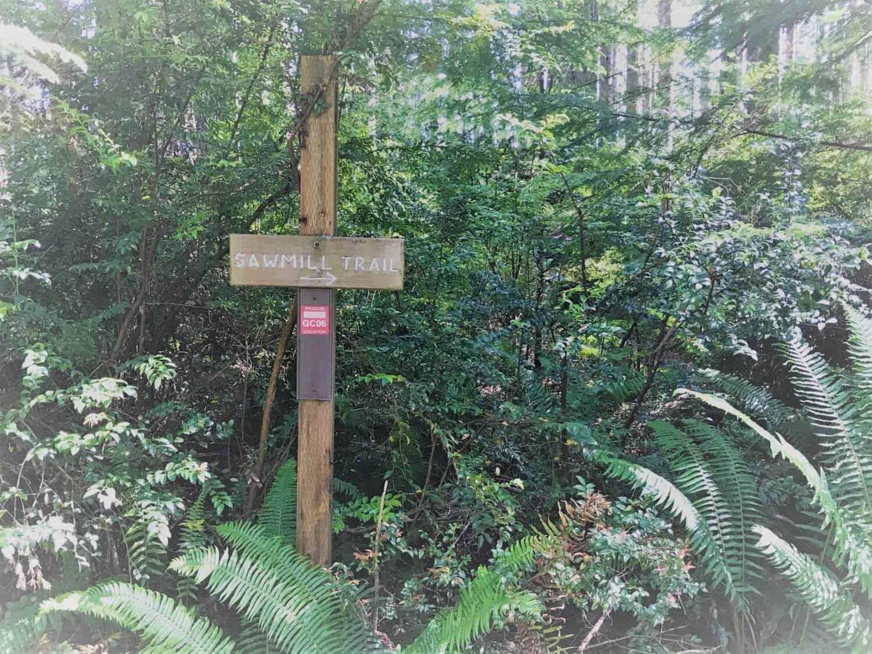Guilletmot Cove Nature Reserve Sawmill trail sign