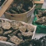 Photo of Oysters Shelton OysterFest