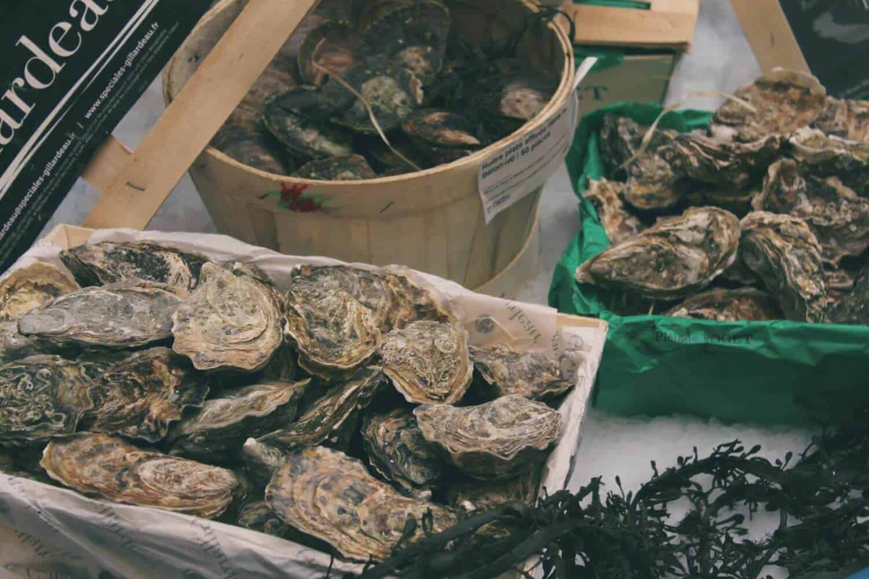 Photo of Oysters Shelton OysterFest