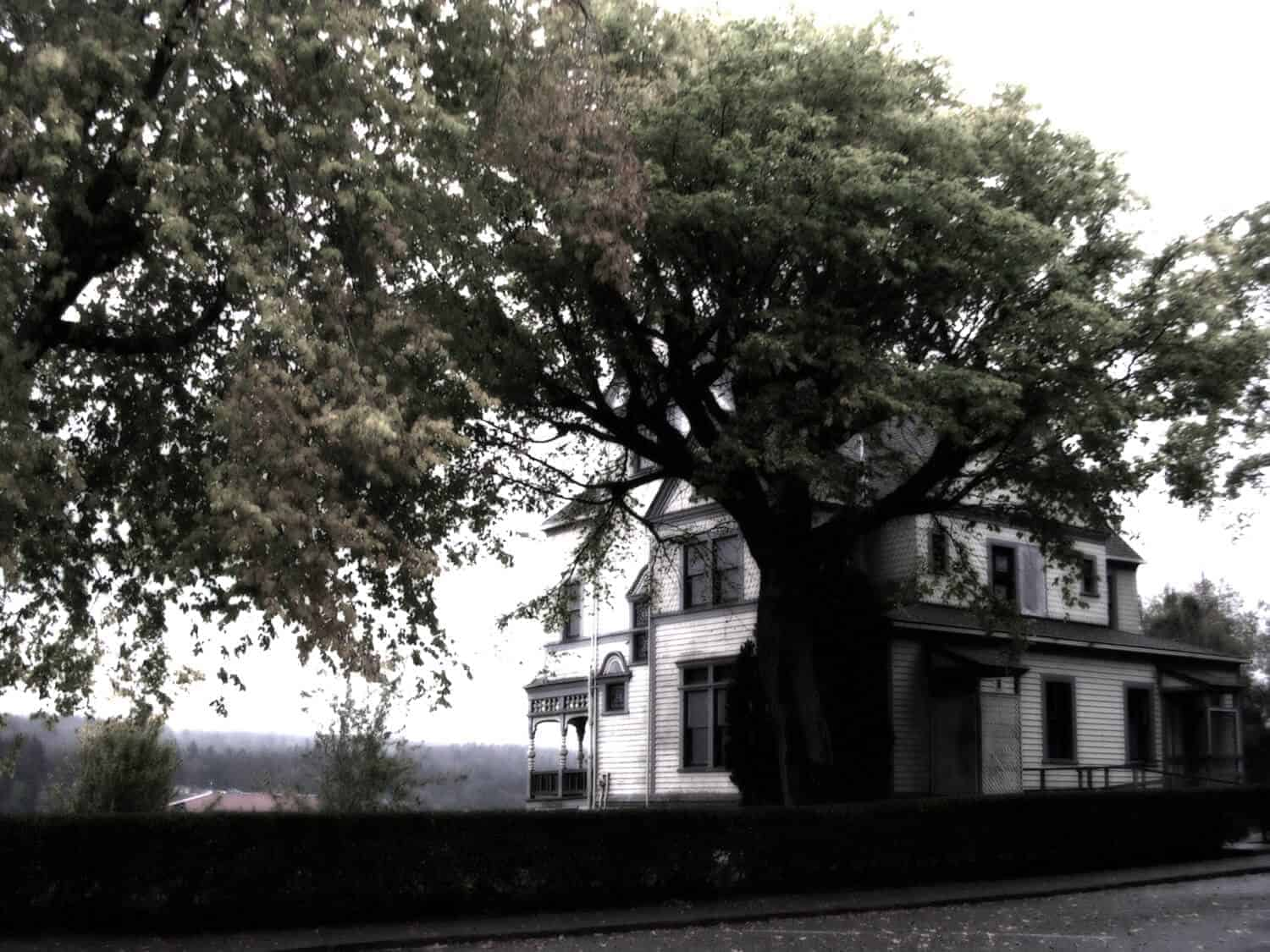 Walker Ames House Haunted Port Gamble Ghost Walk Tours