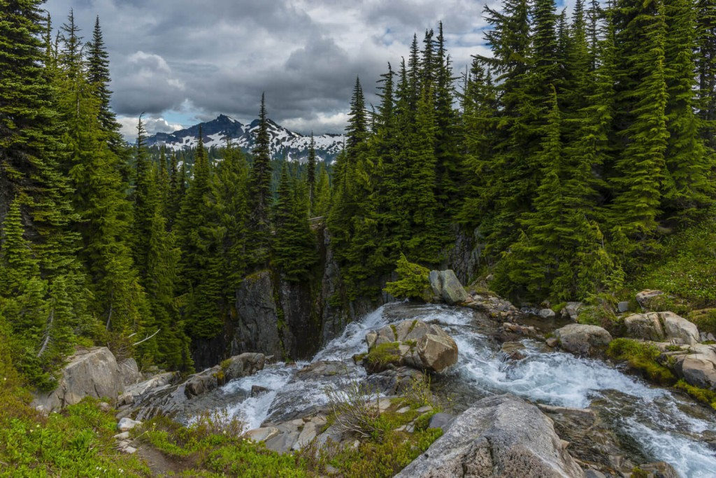Skyline Trail Paradise Park Best Mount Ranier Hiking Trails