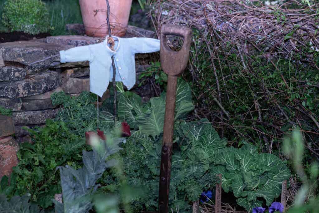 Peter Rabbit Sweater 2020 Northwest Flower and Garden Festival