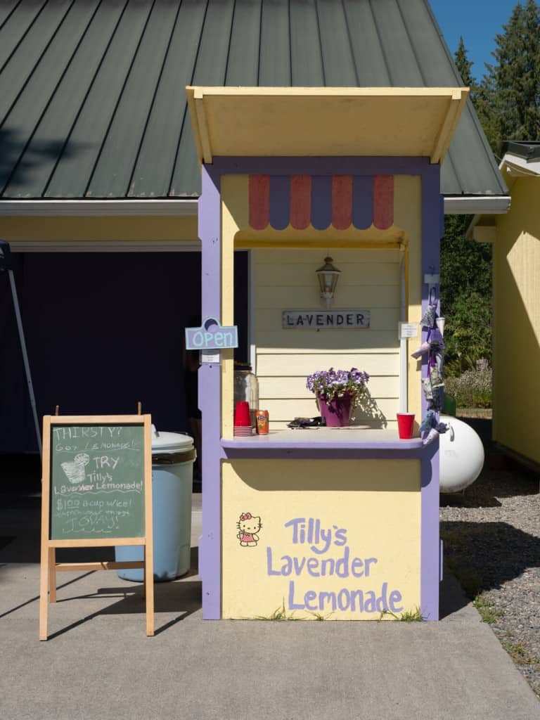 Lavender Lemonade Stand