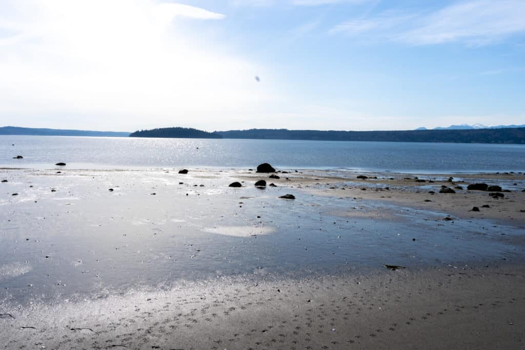 low tide at Foulweather bluff